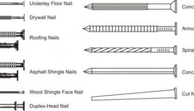 The 21 Main Types Of Nails (The Ultimate Guide)