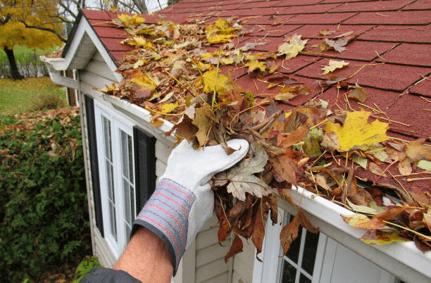 Spring Cleaning & Maintenance Checklists For Landlords